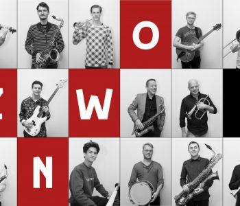 Zuid Nederlands Workshop Orkest (ZNWO)